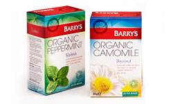 Buy Organic Peppermint Tea
